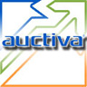 Picture of AuctivaEditor2